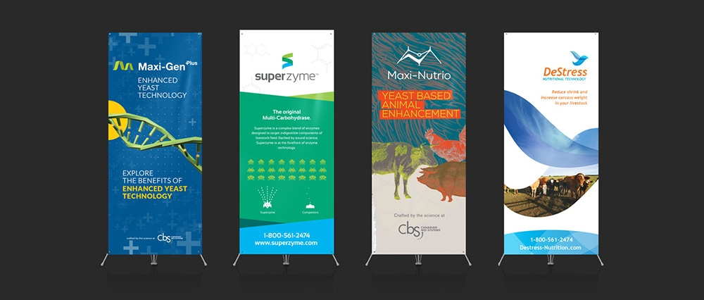 Popup banners designed by Morad Media